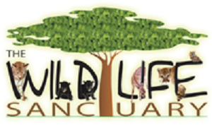 Ellijay Wildlife Sanctuary